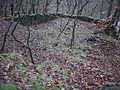 Ruine Heidebug (2).JPG