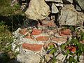 "Ruinele mănăstirii ""Sf. Treime"" - Vişina-Img-3.jpg"