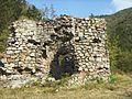 "Ruinele mănăstirii ""Sf. Treime"" - Vişina-Img-9.jpg"