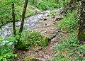 Ruisseau des Palanges (3).jpg