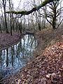 Ruisseau du marais.JPG