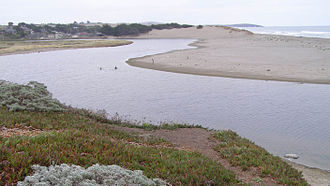 Goat Rock Beach - Mouth of Salmon Creek, looking south with Bodega Dunes to the South.