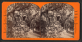 Rustic Walks, Woodward's Gardens, San Francisco, Cal, from Robert N. Dennis collection of stereoscopic views.png