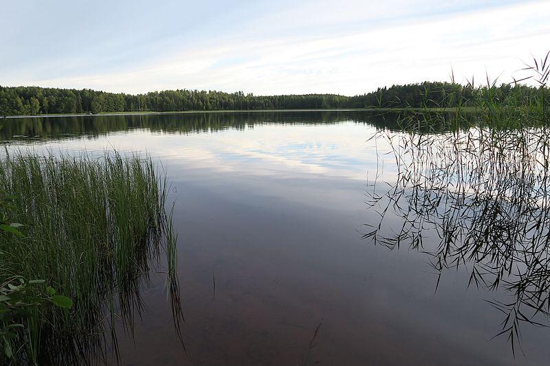 File:Säräjärveä pohjoisesta.jpg