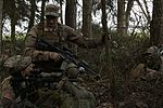 SABER JUNCTION 16 160412-A-WG858-001.jpg