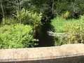 SB Hillsborough River under Pasco CR 54.JPG