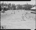 Salinas, California. Young evacuees of Japanese descent play baseball on day of arrival at this . . . - NARA - 536181.tif