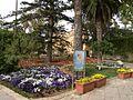 San Anton Attard Gardens 01.jpg