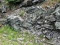 Sandorite intrusive contact with country rock (Sandor Dike, Neoarchean, 2.703 Ga; Route 17 roadcut northeast of Wasp Lake & north of Wawa, Ontario, Canada) 6 (48342249831).jpg
