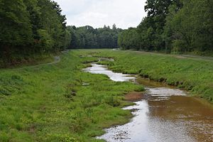 Sandy Lick Creek - Sandy Lick Creek on the Beaver Meadow Walkway in DuBois, Pennsylvania