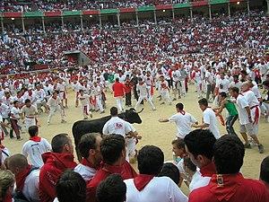 Nella plaza de toros si gioca con i giovani tori