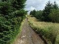 Sarn Helen Roman Road, Hirfynydd - geograph.org.uk - 963797.jpg