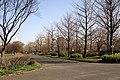 Sarue onshi park04s3200.jpg