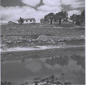 Sasa, Israel - Kibbutz Sasa, 1949