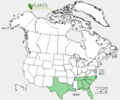 Schoenolirion croceum US-dist-map.png