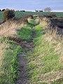 Sea wall footpath heading for Landermere - geograph.org.uk - 603835.jpg
