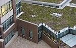 Secret gardens save AF money 160915-F-HB534-1011.jpg