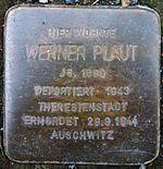 Werner Plaut