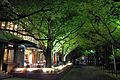 Selan -kita aoyama - panoramio.jpg