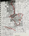 Sensitive plant surveys in the Big Belt and Elkhorn Mountains, U.S.D.A. Forest Service, Region 1, Helena National Forest, Montana (1993) (20369720935).jpg