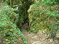 Sentier karstique - Descente (Besain) (5).jpg