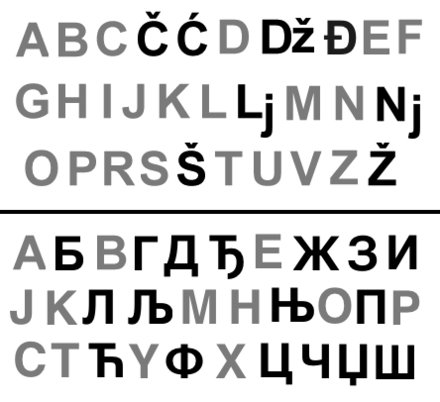 Serbian Latin alphabet (top) and Serbian Cyrillic (bottom) Serbian alphabets.png