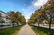 Shaumyana Avenue SPB.jpg