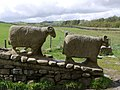 Sheep sculpture near Low Force - geograph.org.uk - 1303289.jpg