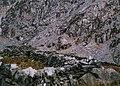 Sheepfold above Pont y Gromlech - geograph.org.uk - 222418.jpg