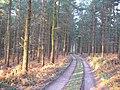 Shirlett Common - geograph.org.uk - 12298.jpg