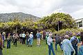 Sierra Madre Wistaria Festival 2016 02.jpg