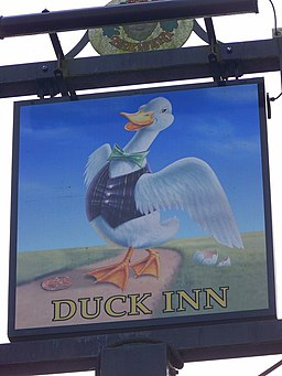 Sign for the Duck Inn - geograph.org.uk - 1054182