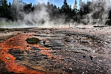 Blackened basin with orange streaks; steam is rising from it with fir trees in the background.