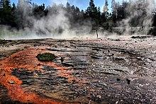bacino Blackened con striature di colore arancione;  il vapore è in aumento da esso con abeti sullo sfondo.