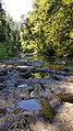 Silver Falls State Park, August 2017 - 18.jpg