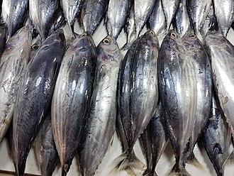 Skipjack tuna - Image: Skipjack tuna (Katsuwonus pelamis) in a Philippine fish market