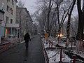 Snowy Scene (5605024778).jpg