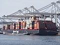 Sofia Express (ship, 2010) IMO 9450404 Port of Rotterdam.JPG