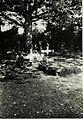 Soldatengrab an der Kaiser Franz-Josefs Eiche. (An der Strasse Stryj-Bolechow.) (BildID 15430841).jpg