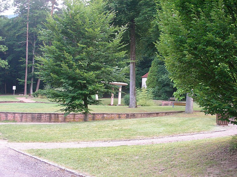 Source Lichteneck (Niederbronn-les-Bains, Bas-Rhin, Alsace)