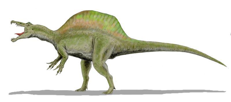 Spinosaurus BW2