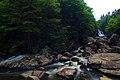 Spring-blackwaterfalls-west-virginia - West Virginia - ForestWander.jpg