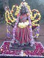 Sri Vanapathra kaliamman.jpg