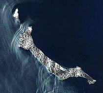 St. Matthew Island World Wind.jpg