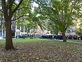 St. Mike's Hospital workers, gathered outside at Queen and Bond, for a fire drill, 2013 10 22 (1).JPG - panoramio.jpg