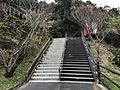 Stairs on sando of Udo Shrine.jpg