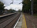 Stamford Hill stn look north2.JPG