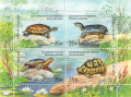 Stamp-russia2017-turtles-block.png