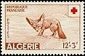 Stamp of Algeria - 1957 - Colnect 211639 - Fennek Fennecus zerda.jpeg