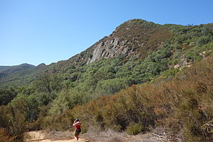 Stebbins Cold Canyon Reserve - Image: Stebbins Cold Canyon Reserve 167